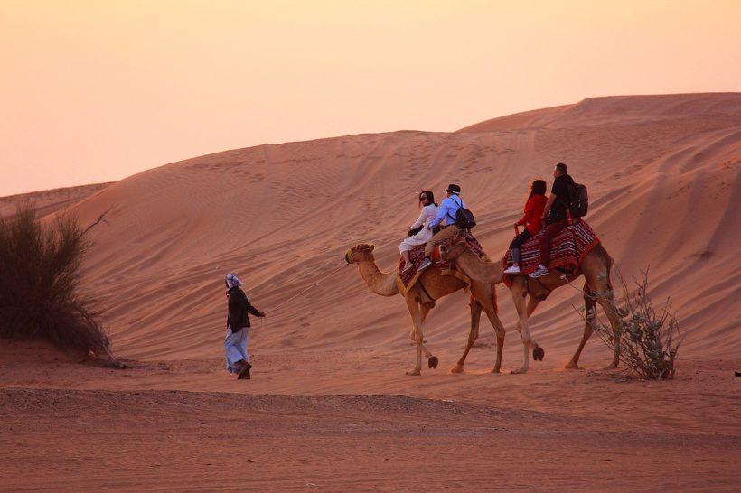 camel-3178798_1280